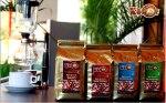 Kopi Luwak Lintong | kopi luwak lintong | kopi luwakgayo