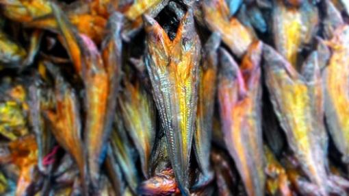 Harga ikan asap selais pekanbaru