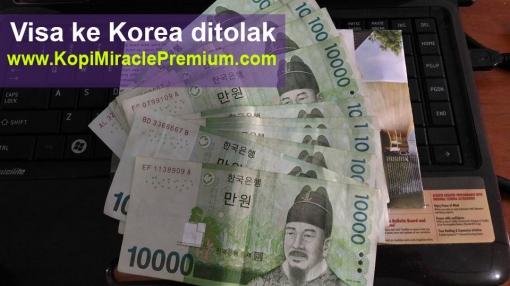 pengalaman penyebab alasan visa korea di tolak