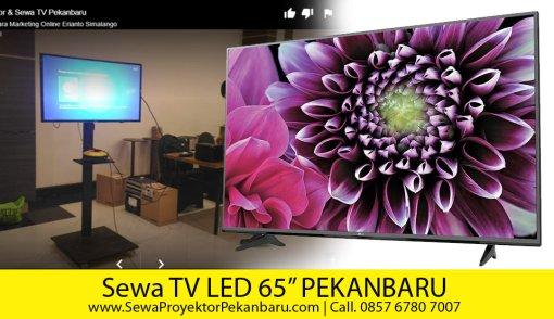 "Sewa TV 65""di Pekanbaru + Standing"